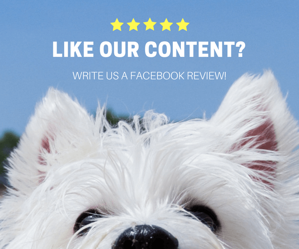 Facebook Review Banner | Vanillapup