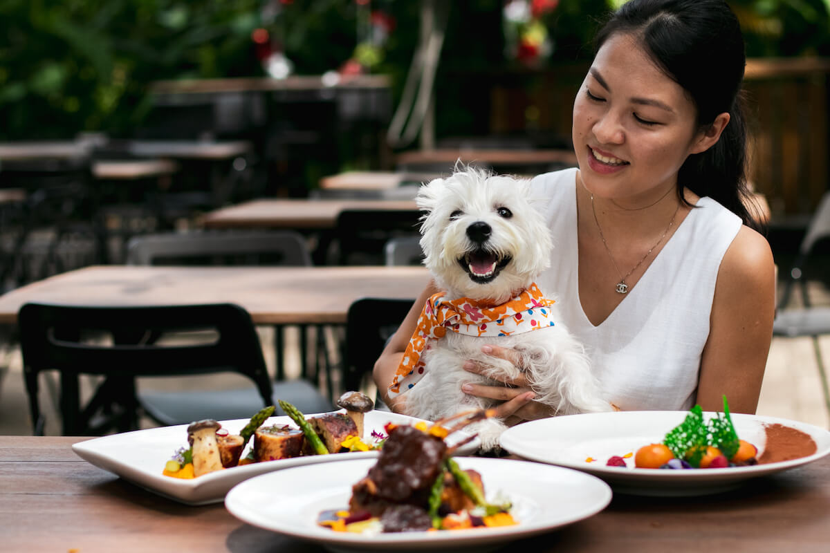 80 Dog-friendly Cafes and Restaurants in Singapore | Vanillapup