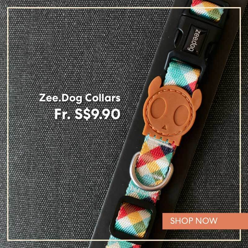 Zee.Dog Collars | Shop Vanillapup