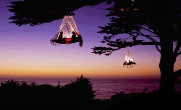 camping in a tree house in California