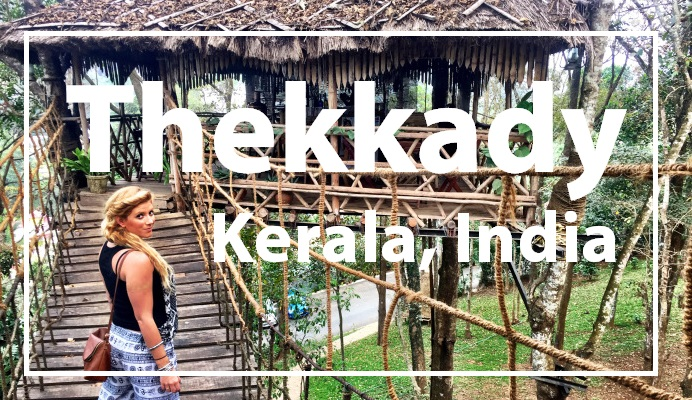 VLOG: Kerala, India Thekkady: Monkeys, Elephants, Shopping & Treehouse!