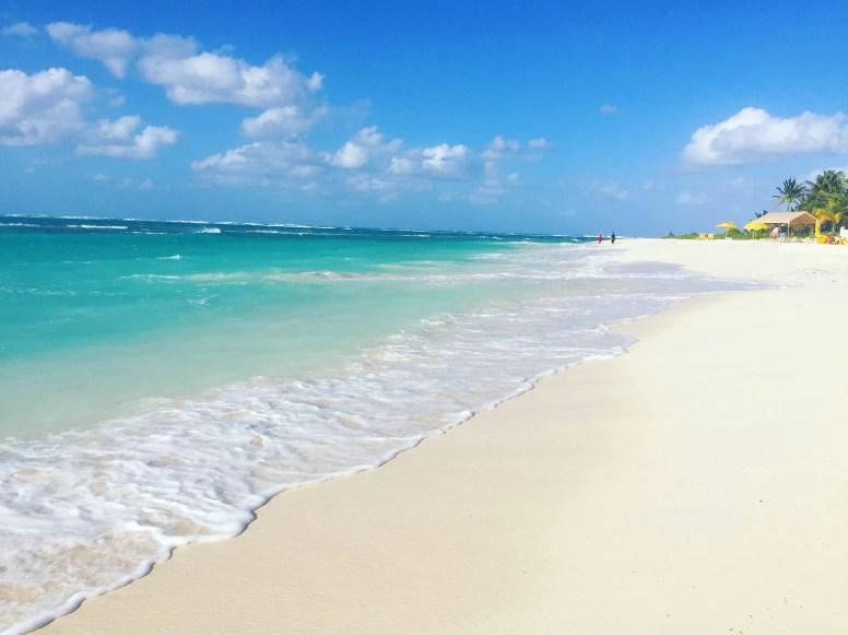 Anguilla beaches shoal bay beach