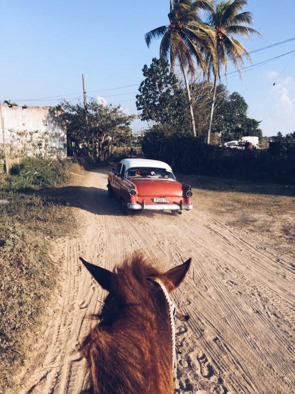 Viñales Horseback Riding CUBA