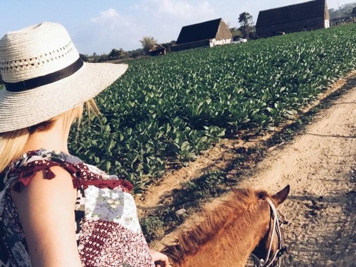 Vinales, Cuba Tobacco Plantation - Hofit Kim Cohen