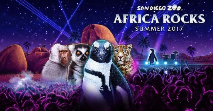 Africa Rocks - San Diego Zoo Newest Exhibits (Summer 2017)