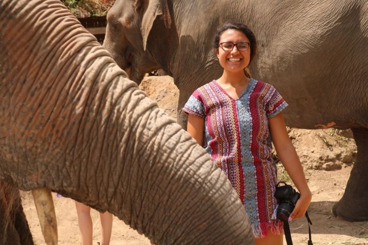 Ethical elephant sanctuary in Chiang Mai