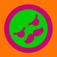 janisle