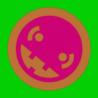 SRNaqvi
