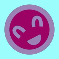 2010sr