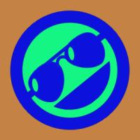Criiis29_____