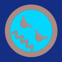michellemaer