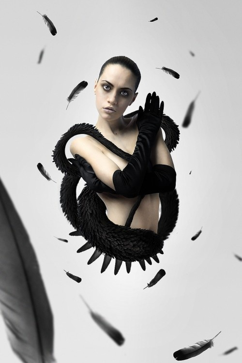 Create a Black Swan Inspired Movie Poster