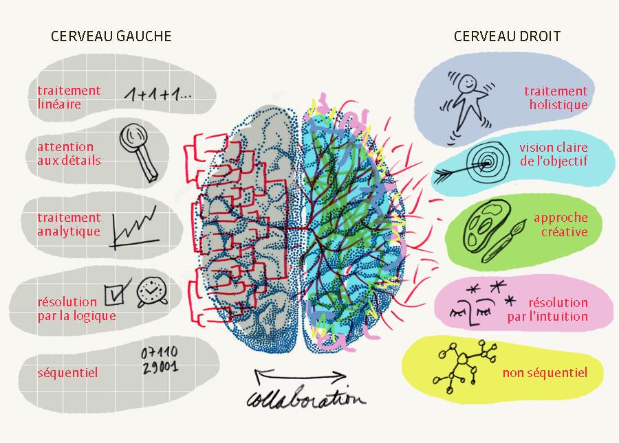 """Résultat de recherche d'images pour """"La beauté dans le cerveau"""""""