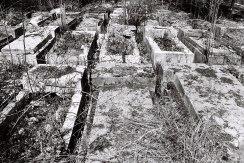 Ivano-Frankivsk - Jewish cemetery