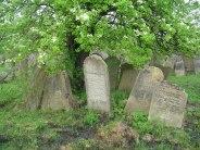 Solotvyn - Jewish cemetery