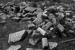 Zolotyi Potik (Galicia) - Jewish cemetery