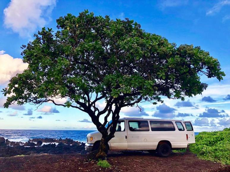 WHERE TO SLEEP IN MAUI CAMPGROUNDS CAMPERVAN RENTALS VANLIFE CAMPING INFO CAMPSITE GOOGLE REVIEWS HANA HIGHWAY CAMPFIRE UNDER THE TREE HALF WAY TO HANA HIGHWAY