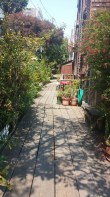 Napier Lane branches off from Filbert Street to a grouping of private homes. FAITH MECKLEY