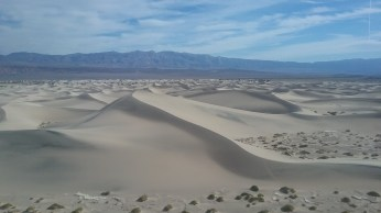 Looking out over the Mesquite Sand Dunes from atop the tallest sand dune. FAITH MECKLEY