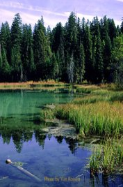 Multnomah Lake
