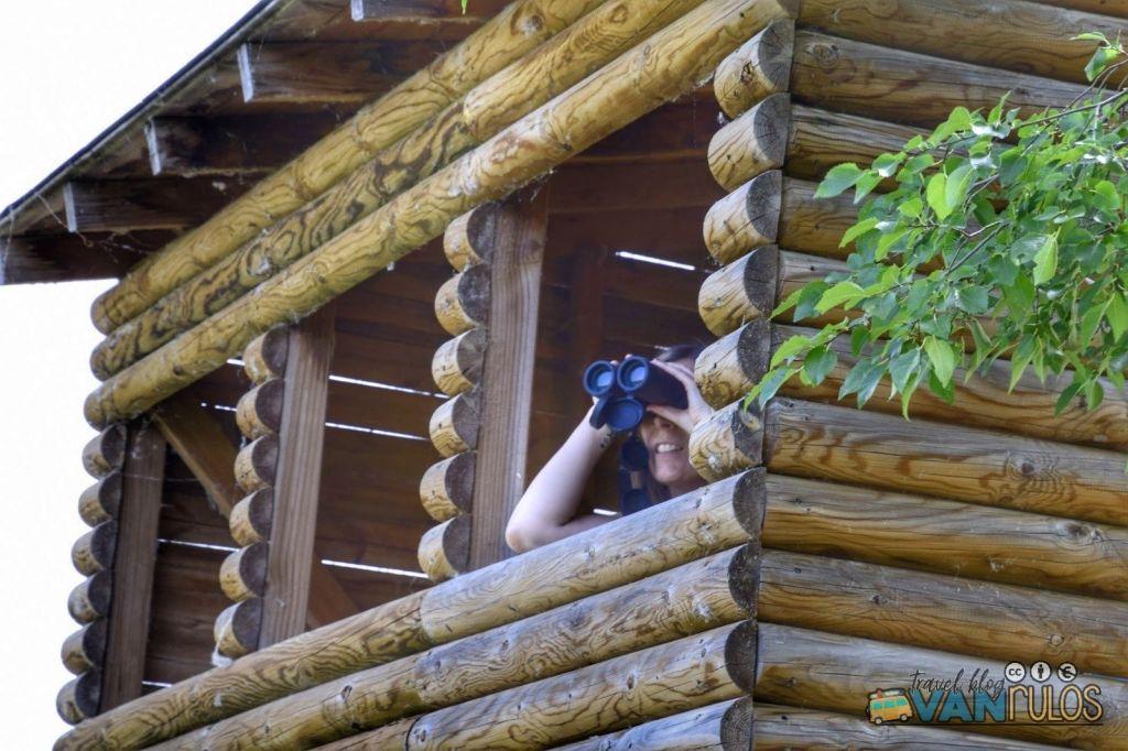 observatorio de aves del lago de Pareja.
