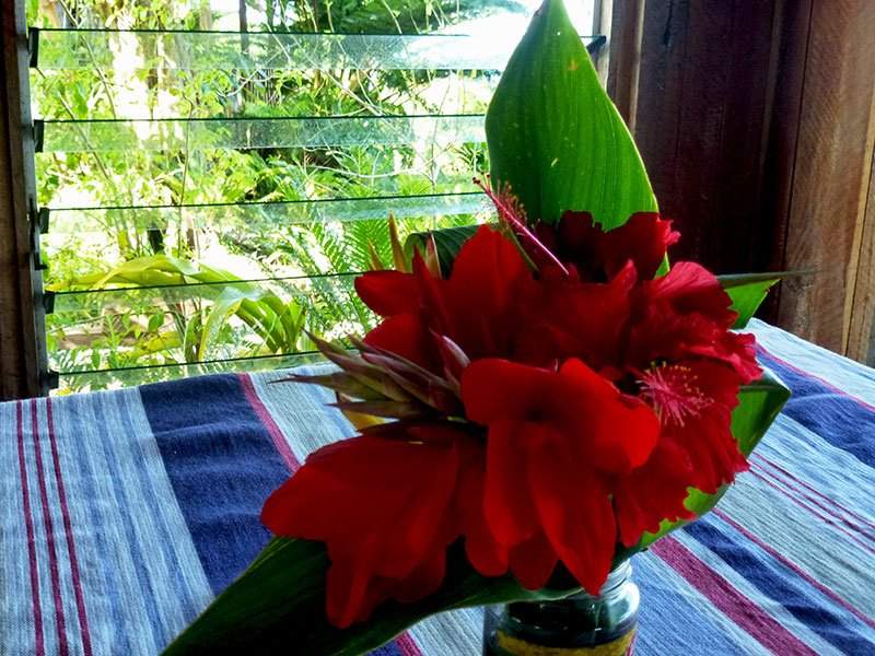 The use of flowers from Rachel's garden helps to identify the interior of the Restaurant with its setting in the Tropical rainforest of the Middlebush highlands region of Tanna island.