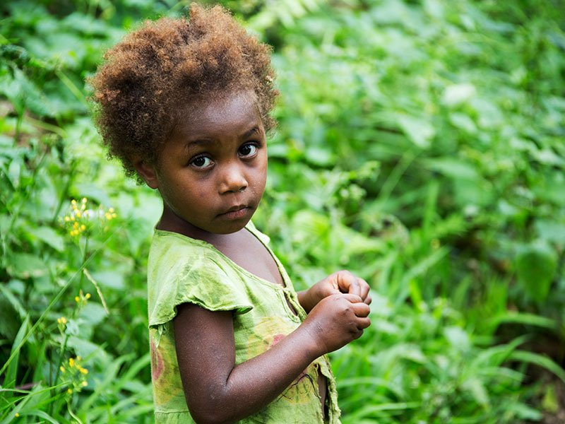 More than 70% of Ni-Vanuatu livelihoods are through subsistence farming and many families and villages are located in the fertile hinterland of Tanna Island, Vanuatu.
