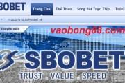 Những điều cần biết khi cá cược tại Sbobet