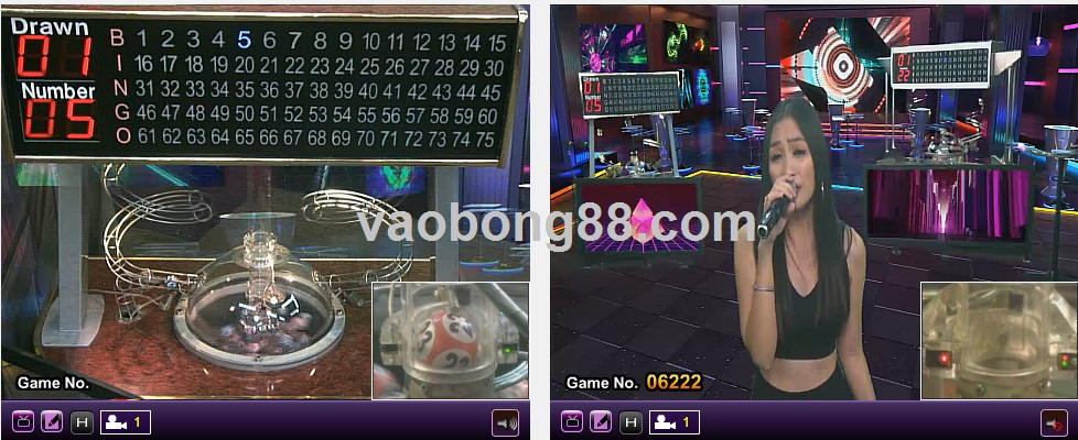 number game live game