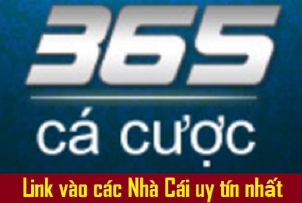Hiện nay, tại Việt Nam cá cược chưa được hợp pháp hóa đó là lý do những  trang mạng cá cược đông người chơi sẽ bị chặn ngay lập tức.