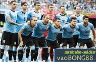 Soi kèo tỷ số nhà cái Uruguay vs Ecuador 5h00 – 17/6/2019