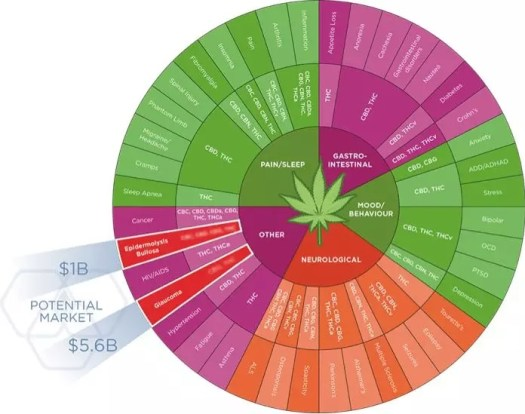 a large number of safe and stable cannabinoid raw materials will be needed for drug delivery to the market.