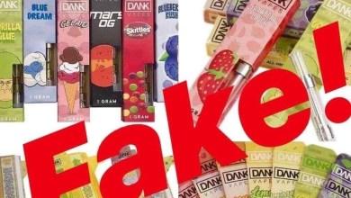 Vape enterprises fake data to get financed