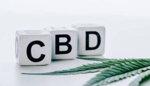 How CBD Helps Seniors in Their Everyday Living