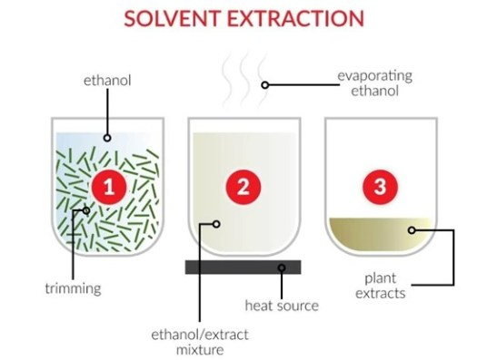 Solvent extraction cbd