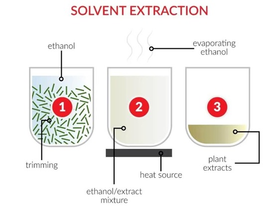 Solvent extraction cbd