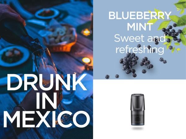Relx blueberry