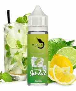 Hayvan Juice Longfill Aroma Ga-Zoz 10ml