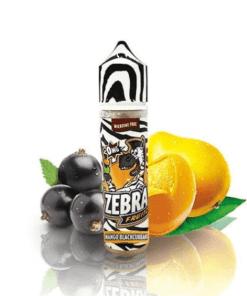 Fruitz Mango Blackcurrant (Booster 50ml)