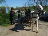 Pferdefuhrwerk in Cetatea Veche