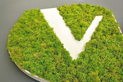 Logo vegetal liquen