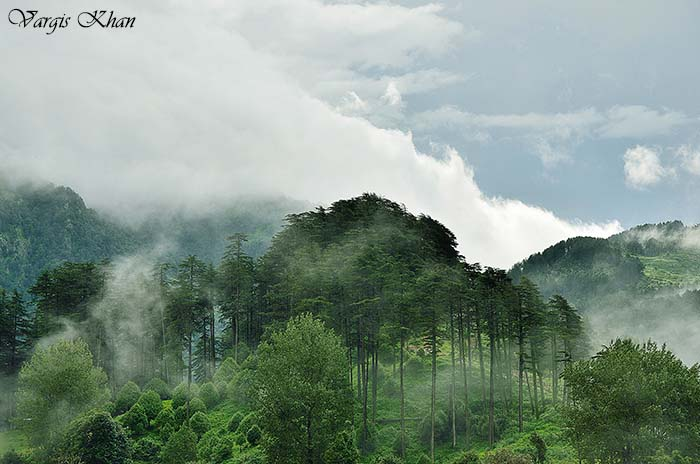 Dhanaulti Travelogue