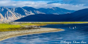 Nubra valley to pangong tso, the route, distance, time and which one should you chose