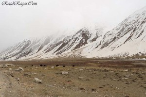 best time to visit zanskar valley