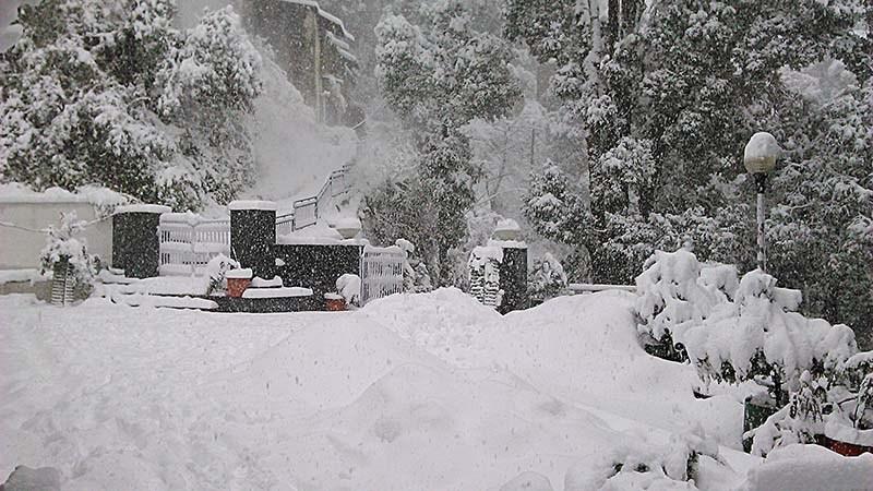 snow near delhi