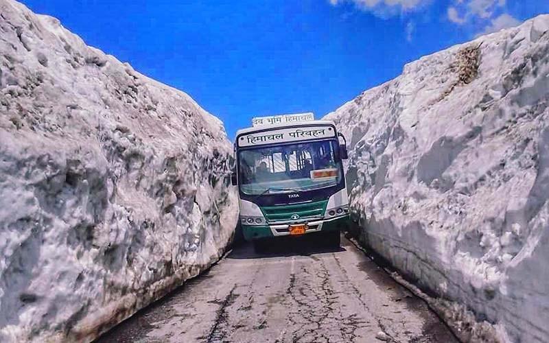 leh to manali bus