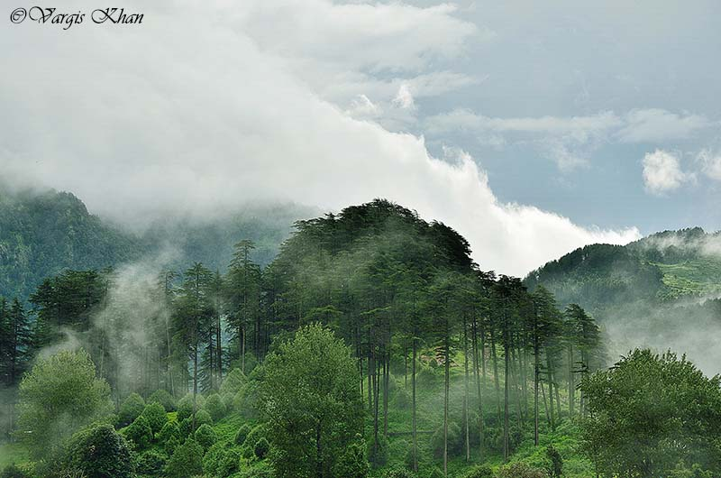 how to plan your trip to dhanaulti