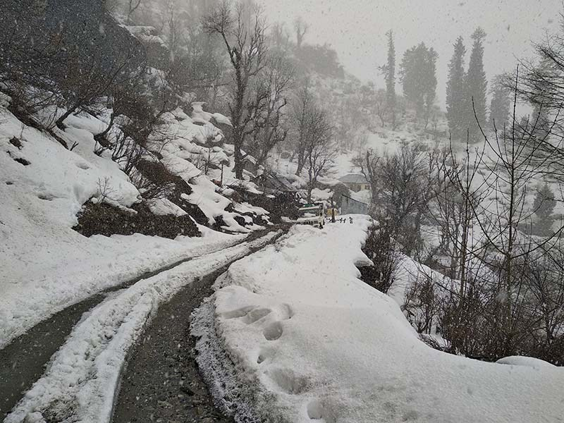 snowfall in solang valley