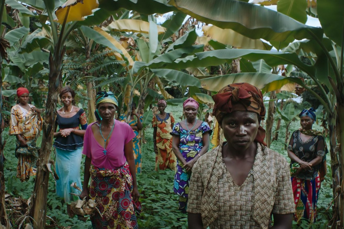 A group of women wearing modest yet brightly colorful clothes standing in a lush orchard of banana trees. Positioned throughout the foreground and middle ground, they all look into the camera.