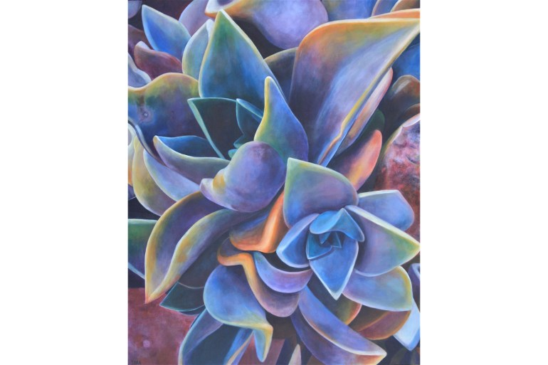 A vibrant painting of a close-up view of a succulent plant. The plump leaves are depicted in a gentle rainbow of hues.